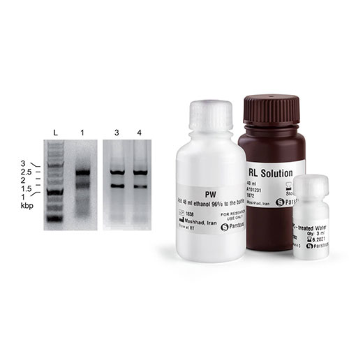 Total RNA Extraction Kit